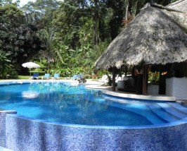 Relaxen Sie am Pool
