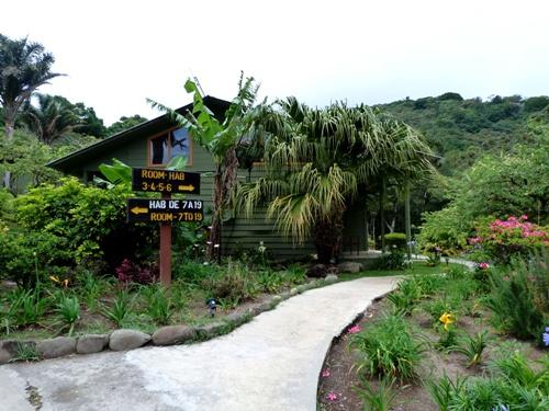 Garten der Komfortunterkunft in Monteverde