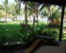 Blick in den Garten der Komfortunterkunft