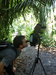 Wanderung durch den Carara Nationalpark