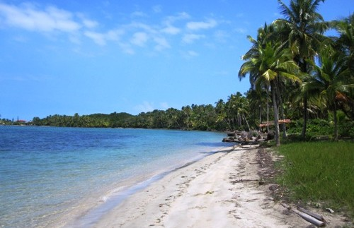 Der schöne Strand auf den Bocas del Toro