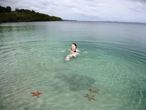 Highlight während der Panama Rundreise: Karibisches Meer mit Seesternen