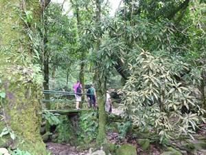 Wanderer in El Valle de Anton