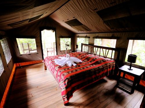 Safari Zelt im Dschungel bei Ojochal