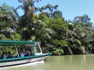 Bootsanreise nach Tortuguero
