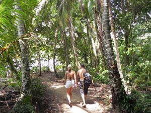 Erkunden Sie den Manzanillo Nationalpark