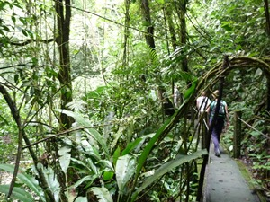 Wanderung in der Umgebung vom Valle de Antón