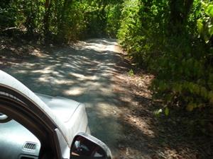Schotterpiste in der Nähe von Montezuma