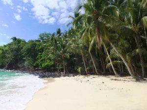 Den Strand genießen