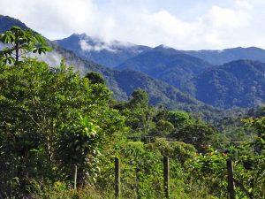 Blick auf die Berge der Cordillera Talamanca