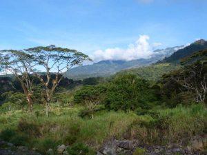 Blick auf die grüne Umgebung & Berge in Boquete