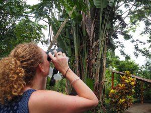 Vogelbeobachtung in Boca Tapada