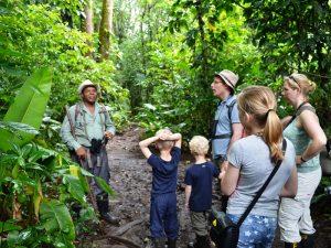 Dschungelwanderung in Costa Rica