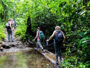 Wanderer unterwegs im Corcovado Nationalpark