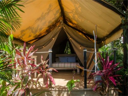 Zelt von außen
