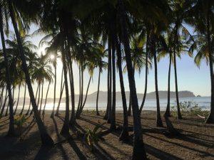 Blick auf den tropischen Strand