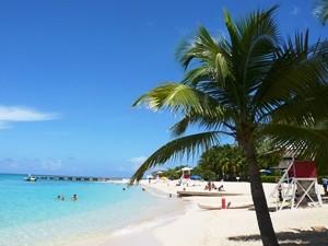 Weißer Karibikstrand von Palmen umsäumt