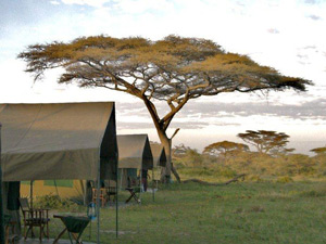 tanzania kamperen