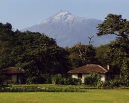 tanzania arusha cottages