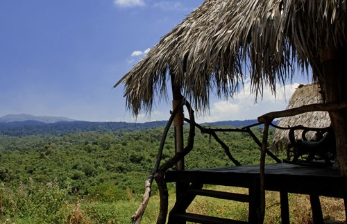 crater forest tented lodge tanzania