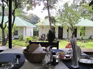 kenia tanzania acco brood