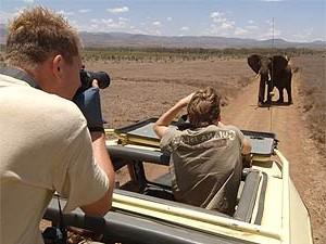tanzania-serengeti-safari