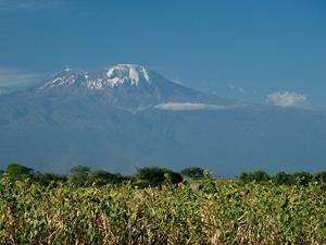 kilimanjaro moshi tanzania