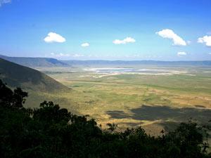 safari ngorongoro tanzania vakantie
