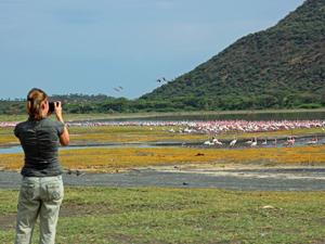 safari Samburu Kenia - foto
