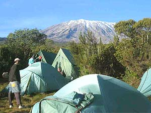 tanzania kilimanjaro simbacam