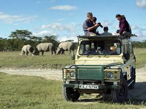 tanzania safari gamedrive