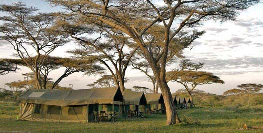 Camp tijdens je Tanzania reis