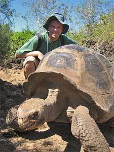 ecuador galapagos schildpad
