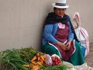 Cuenca - Hoogtepunten rondreis Ecuador