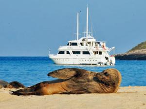 galapagos boot zeehond ecuador