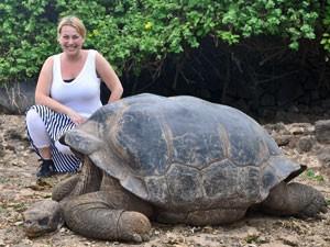 galapagos-eilandhoppen-schildpad