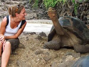galapagos reizen schildpad