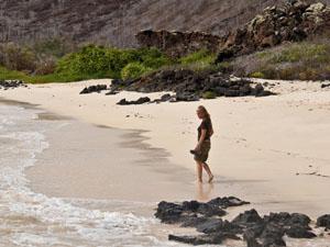 strand Galapagos eilandhoppen