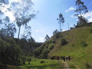 wandelen Ecuador reis Andes