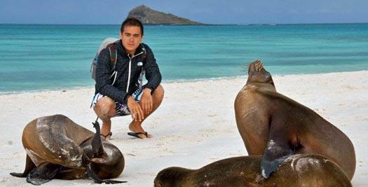 Reis Ecuador - zeeleeuwen