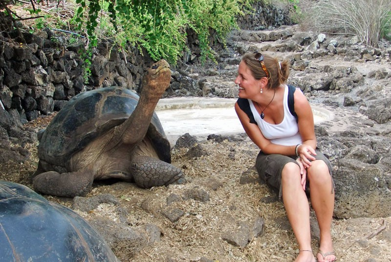 Reizen Galapagos - schildpad