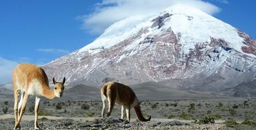 Rondreis Ecuador - vulkaan