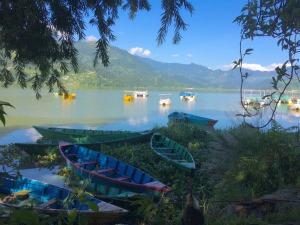 Easy Going Pokhara