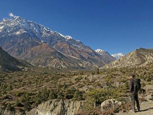 annapurna trekking berg