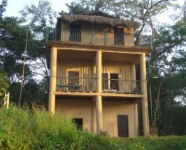 chitwan jungle lodge
