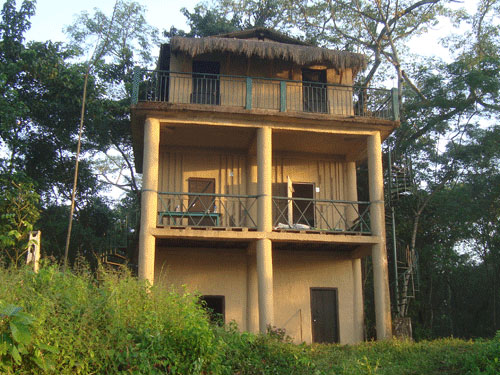 chitwan jungle lodge