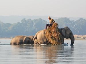 nepal reizen - Chitwan National Park