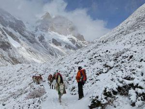 sneeuw-nepal-trekking - Klimaat Nepal