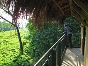 Tharu Nepal jungle tower