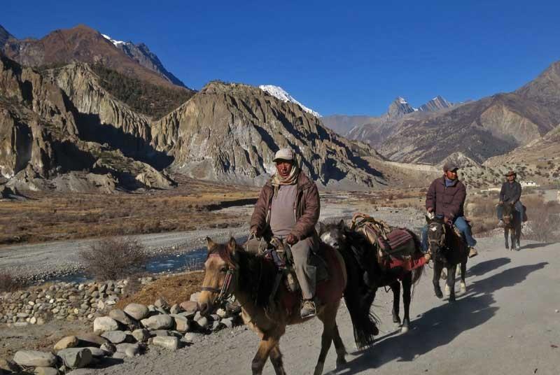 Nepal vakantie - paardjes